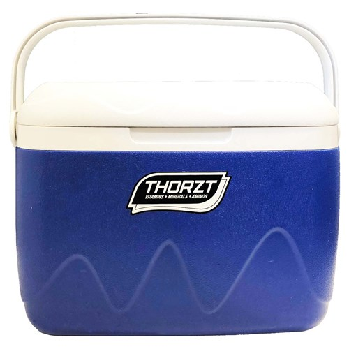 THORZT Icebox Blue - 21L